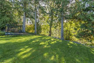 """Photo 13: 4336 MEIGHEN Place in Abbotsford: Abbotsford East House for sale in """"AUGUSTON"""" : MLS®# R2315446"""