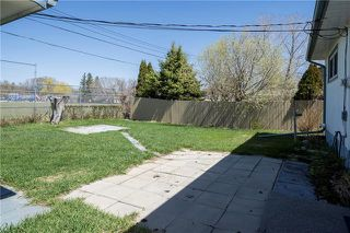 Photo 19: 357 Harold Avenue East in Winnipeg: East Transcona Residential for sale (3M)  : MLS®# 1905882