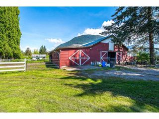 Photo 17: 8801 EAGLE Road in Mission: Dewdney Deroche House for sale : MLS®# R2367488
