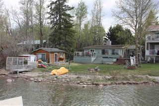 Photo 18: 14 Viola Beach: Rural Wetaskiwin County House for sale : MLS®# E4157677