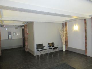 """Photo 3: 235 2033 TRIUMPH Street in Vancouver: Hastings Condo for sale in """"MACKENZIE HOUSE"""" (Vancouver East)  : MLS®# R2382398"""