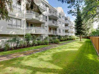 Photo 19: 119 8600 GENERAL CURRIE Road in Richmond: Brighouse South Condo for sale : MLS®# R2406917