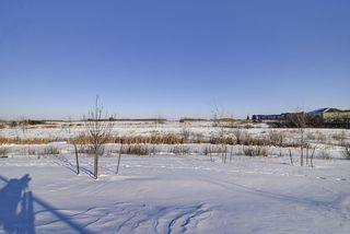 Photo 48: 210 ASTON Point: Leduc House for sale : MLS®# E4184598