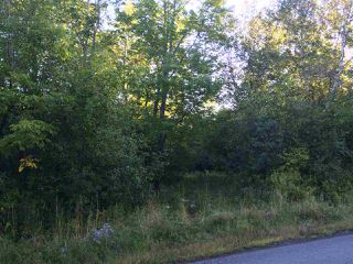 Photo 2: John Campbell Road in Frasers Mountain: 108-Rural Pictou County Vacant Land for sale (Northern Region)  : MLS®# 202006605