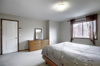 Photo 16: 214 CRANFIELD Gardens SE in Calgary: Cranston Detached for sale : MLS®# A1024102