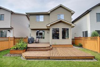 Photo 36: 214 CRANFIELD Gardens SE in Calgary: Cranston Detached for sale : MLS®# A1024102