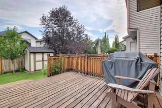 Photo 39: 214 CRANFIELD Gardens SE in Calgary: Cranston Detached for sale : MLS®# A1024102