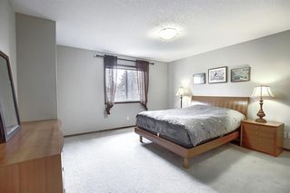 Photo 15: 214 CRANFIELD Gardens SE in Calgary: Cranston Detached for sale : MLS®# A1024102