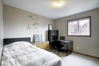 Photo 24: 214 CRANFIELD Gardens SE in Calgary: Cranston Detached for sale : MLS®# A1024102
