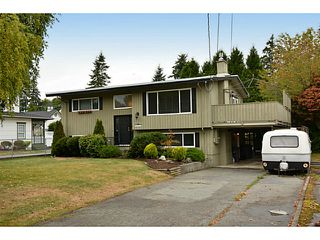 """Photo 50: 13151 15A Avenue in Surrey: Crescent Bch Ocean Pk. House for sale in """"Ocean Park"""" (South Surrey White Rock)  : MLS®# F1423059"""
