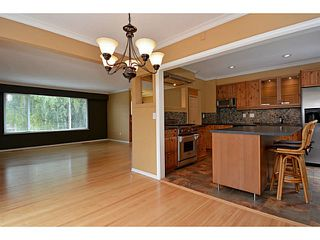"""Photo 60: 13151 15A Avenue in Surrey: Crescent Bch Ocean Pk. House for sale in """"Ocean Park"""" (South Surrey White Rock)  : MLS®# F1423059"""