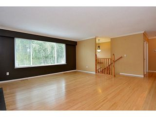 """Photo 56: 13151 15A Avenue in Surrey: Crescent Bch Ocean Pk. House for sale in """"Ocean Park"""" (South Surrey White Rock)  : MLS®# F1423059"""