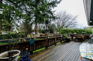 Photo 19: 7056 HILLVIEW Street in Burnaby: Government Road House for sale (Burnaby North)  : MLS®# R2039855
