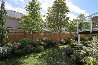 "Photo 20: 8038 211B Street in Langley: Willoughby Heights House for sale in ""YORKSON NORTH"" : MLS®# R2163320"