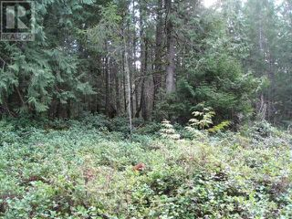 Photo 5: 362 Mill Road in Thetis Island: Land for sale : MLS®# 368794