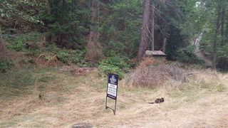 Photo 5: Lot 27 CHANNELVIEW Drive: Bowen Island Land for sale : MLS®# R2202273
