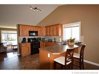 Photo 21: 147 JORDAN Parkway in Red Deer: RR Johnstone Crossing Residential for sale : MLS®# CA0060538