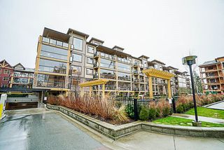 "Main Photo: 556 8258 207A Street in Langley: Willoughby Heights Condo for sale in ""Yorkson Creek"" : MLS®# R2241331"