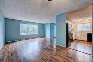 Photo 3: 196 FALDALE Close NE in Calgary: Falconridge House for sale : MLS®# C4190627