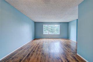 Photo 4: 196 FALDALE Close NE in Calgary: Falconridge House for sale : MLS®# C4190627