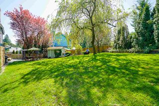 """Photo 19: 7291 150A Street in Surrey: East Newton House for sale in """"CHIMNEY HILLS"""" : MLS®# R2283944"""