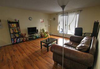 Main Photo: 307 1945 105 Street in Edmonton: Zone 16 Condo for sale : MLS®# E4088082