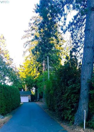 Photo 43: 6277 Springlea Road in VICTORIA: CS Tanner Single Family Detached for sale (Central Saanich)  : MLS®# 397808