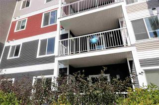 Photo 14: 219 1820 Rutherford Road in Edmonton: Zone 55 Condo for sale : MLS®# E4079010