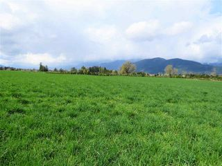 "Photo 10: 10689 MCSWEEN Road in Chilliwack: Fairfield Island House for sale in ""Fairfield Island"" : MLS®# R2306254"