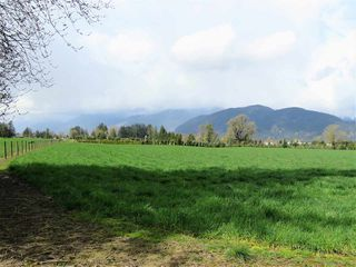 "Photo 9: 10689 MCSWEEN Road in Chilliwack: Fairfield Island House for sale in ""Fairfield Island"" : MLS®# R2306254"