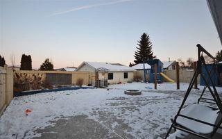 Photo 26: 3651 109 Street Edmonton 3 Bed 2.5 Bath Family House For Sale E4134352