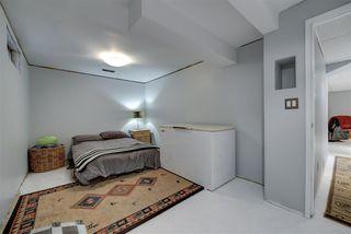Photo 23: 3651 109 Street Edmonton 3 Bed 2.5 Bath Family House For Sale E4134352