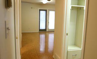 Photo 26: 9305 78 Avenue in Edmonton: Zone 17 House for sale : MLS®# E4137726