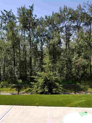 Photo 29: 105 5025 EDGEMONT Boulevard in Edmonton: Zone 57 Condo for sale : MLS®# E4145340