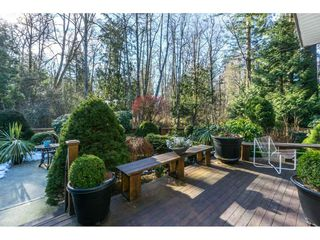 Photo 19: 14036 22 Avenue in Surrey: Sunnyside Park Surrey House for sale (South Surrey White Rock)  : MLS®# R2345347