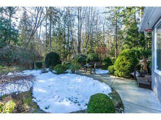 Photo 17: 14036 22 Avenue in Surrey: Sunnyside Park Surrey House for sale (South Surrey White Rock)  : MLS®# R2345347