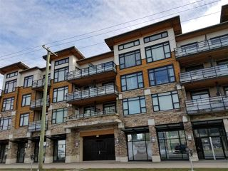 """Main Photo: 411 6888 ROYAL OAK Avenue in Burnaby: Metrotown Condo for sale in """"Kabana"""" (Burnaby South)  : MLS®# R2346580"""