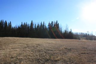 Main Photo: AB HWY 13 Range road 40 Highway: Rural Wetaskiwin County Cottage for sale : MLS®# E4150994