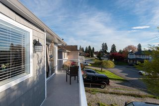Photo 11: 20489 DALE Drive in Maple Ridge: Southwest Maple Ridge House for sale : MLS®# R2360254