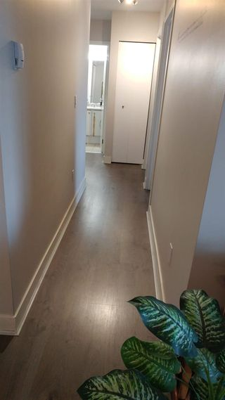 "Photo 12: 313 5700 200 Street in Langley: Langley City Condo for sale in ""Langley Village Apartments"" : MLS®# R2365286"