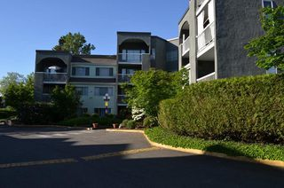 "Photo 1: 313 5700 200 Street in Langley: Langley City Condo for sale in ""Langley Village Apartments"" : MLS®# R2365286"