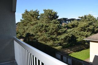 "Photo 5: 313 5700 200 Street in Langley: Langley City Condo for sale in ""Langley Village Apartments"" : MLS®# R2365286"