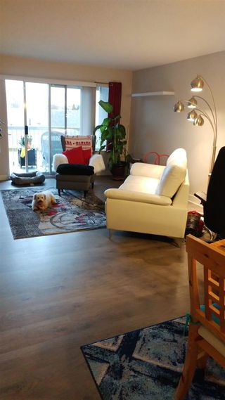 "Photo 9: 313 5700 200 Street in Langley: Langley City Condo for sale in ""Langley Village Apartments"" : MLS®# R2365286"