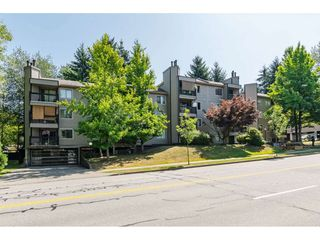 "Photo 1: 207 10560 154 Street in Surrey: Guildford Condo for sale in ""Creekside"" (North Surrey)  : MLS®# R2385171"