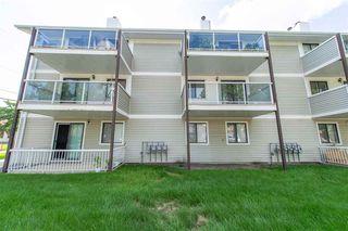 Photo 19: 303 10604 110 Avenue in Edmonton: Zone 08 Condo for sale : MLS®# E4166527
