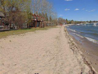 Photo 2: 12A Argentia Beach: Rural Wetaskiwin County Rural Land/Vacant Lot for sale : MLS®# E4168410