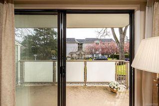 Photo 6: 101 2125 Oak Bay Ave in Oak Bay: OB South Oak Bay Condo Apartment for sale : MLS®# 837058