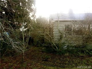 Photo 5: 1421 Fairfield Road in VICTORIA: Vi Fairfield West Single Family Detached for sale (Victoria)  : MLS®# 331226