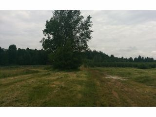 Photo 4: 29700 HUNTINGDON Road in Abbotsford: Aberdeen Land for sale : MLS®# F1415007