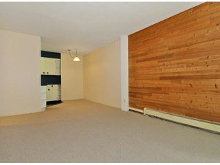 "Photo 13: 204 195 MARY Street in Port Moody: Port Moody Centre Condo for sale in ""VILLA MARQUIE"" : MLS®# V1107994"